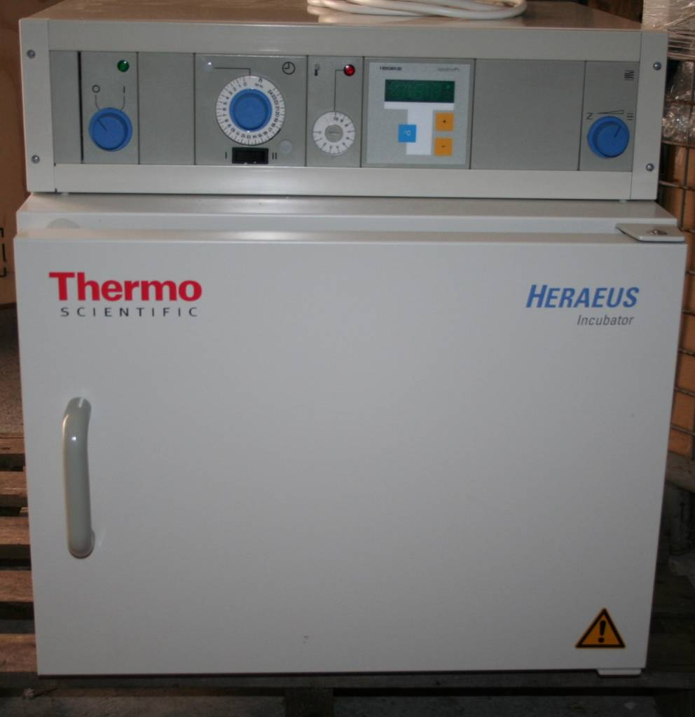 Thermo Scientific Thermo Heraeus B6030 Brutschrank