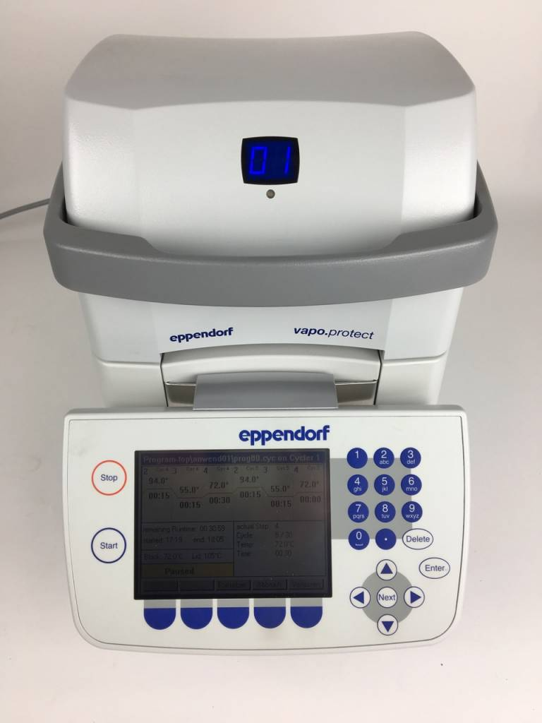 Eppendorf Eppendorf Mastercylcer pro S Thermocycler