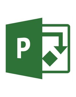 Microsoft Project 2019 Standard für Studium und Privat