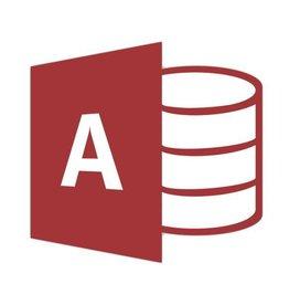 Microsoft Access 2019 für Gewerbe