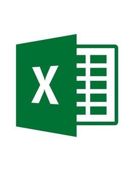 Microsoft Excel Mac 2019 für Gewerbe