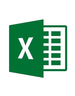 Microsoft Excel 2019 für Behörden
