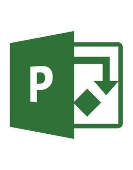 Microsoft Project 2016 Professional für Gemeinnutz und Gewerbe