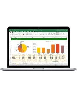 Microsoft Project 2019 Professional für Behörden