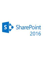 Microsoft SharePoint Server 2016 für Behörden