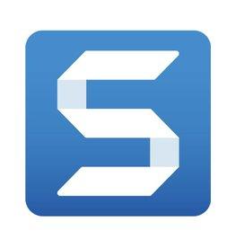 TechSmith Snagit 13 für Gemeinnutz, Gewerbe und Privat