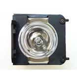 EIKI 080-DH20-0020 Originele lampmodule