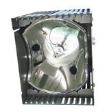 EIKI 610 259 5291 Originele lampmodule
