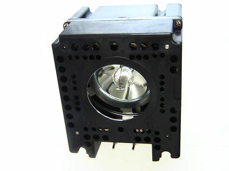 LIESEGANG ZU0237 04 4010 Originele lampmodule