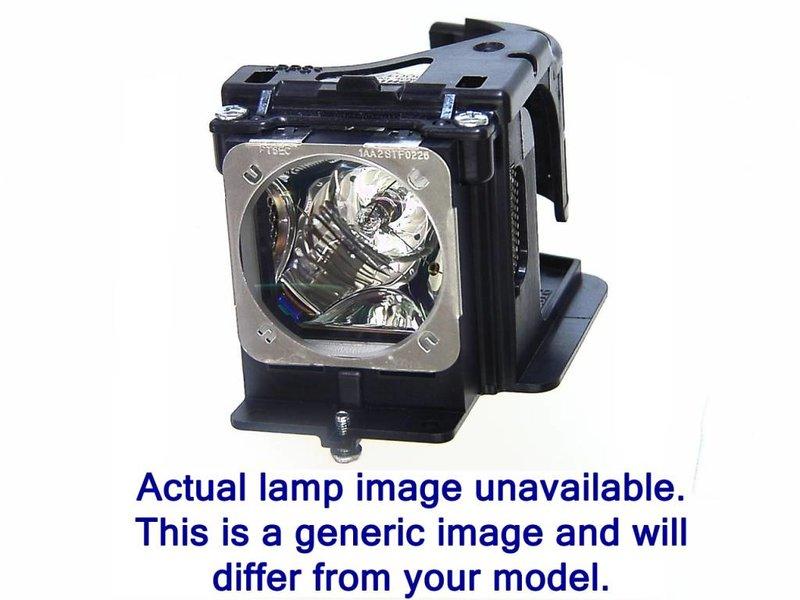 NEC NP27LP Originele lamp met behuizing