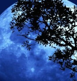 Farfalla Slaap lekker (Schlaf ein - Lavendel) 5 ml.