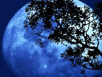 Farfalla Slaap lekker( Schlaf ein - Lavendel) 5 ml.