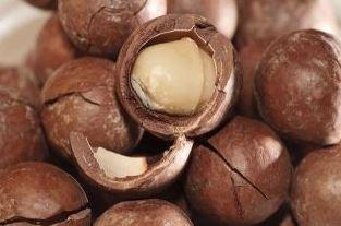 Macadamianootolie - biologisch 100 ml.