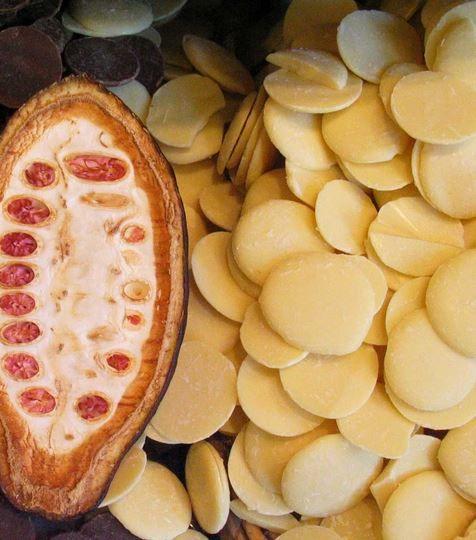 Cacaoboter-pastilles biologisch - fairtrade