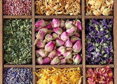 Kruiden en kleuren