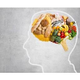 Rineke Dijkinga Lezing op 23-02-2019 | Voeding, ons vergeten brein medicijn
