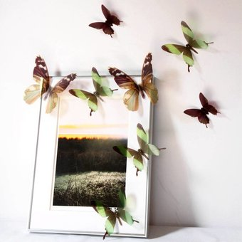 3D vlinders serie groen