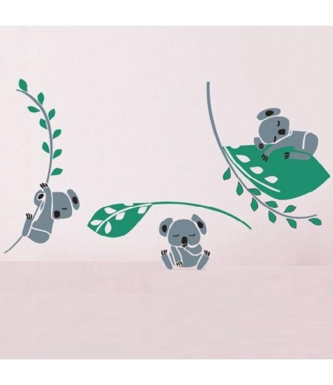 Muursticker drie lieve koala beertjes