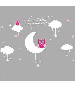 Muursticker uiltjes op maan en wolk met sterren