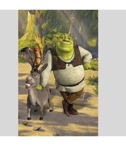 Behangposter Shrek