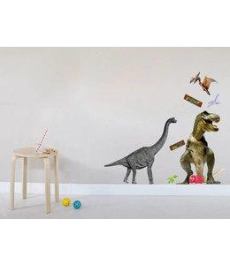 Muursticker dinosaurussen  T- rex Groot