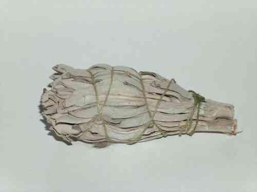 Afbeelding witte salie