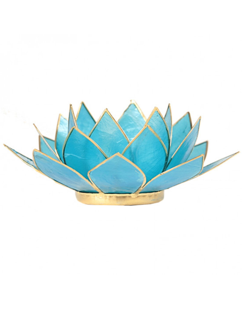 Lotus kaarshouder - aquamarijn