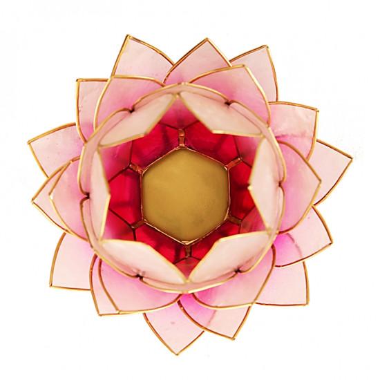 Lotus kaarshouder - wit/roze (groot)