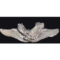 Eagle wings pin