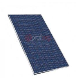 Jinko Solar Jinko Poly 275Wp