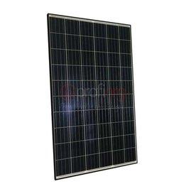 Jinko Solar Jinko Maxim Poly RealBlack 270