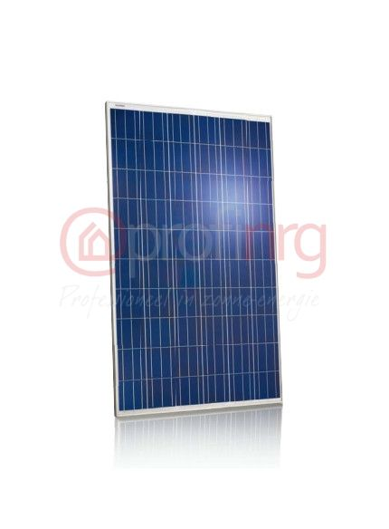 Jinko Solar Jinko Maxim 270 Poly