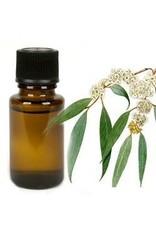 Mandisakura Eucalyptus - etherische olie - 10 ml