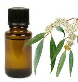 Mandisakura Eucalyptus - 10 ml