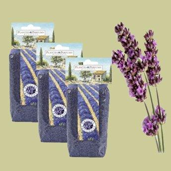 Plantes&Parfums Lavendel los - 100 gram