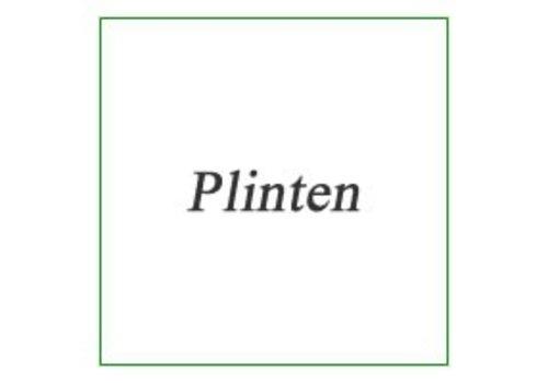 Plinten