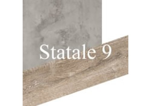 Statale 9