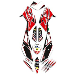 Beta 020450118 000 Racing Decal Set RR 2010