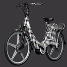 Carter E-volution Bike Carter E-Bike 250W Black-White patern