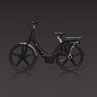 Carter E-volution Bike Carter E-Bike 250W Zwart
