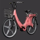 Carter E-volution Bike Carter E-Bike 250W Roze