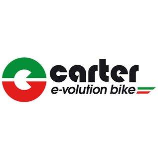 Carter E-volution Bike Carter E-Bike 250W Green