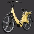 Carter E-volution Bike Carter E-Bike 250W Geel