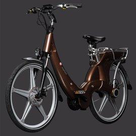 Carter E-volution Bike Carter E-Bike 250W Brons / Bruin