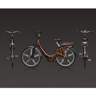 Carter E-volution Bike Carter E-Bike 250W Bronze / Brown