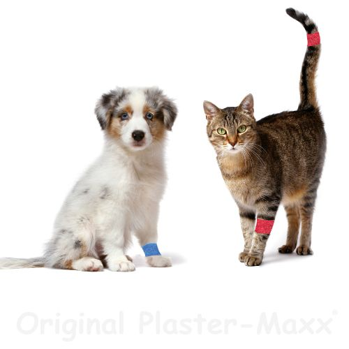 Plaster-Maxx - Sparset 1xHaut, 1xRot, 1xBlau