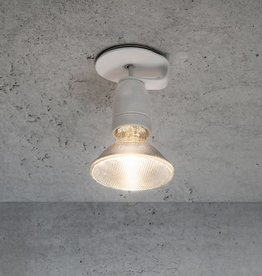 Lichtlauf GmbH Spotzki, der Spot