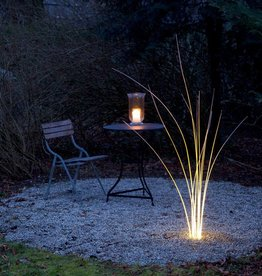 Lichtlauf GmbH MunichReeds outdoor