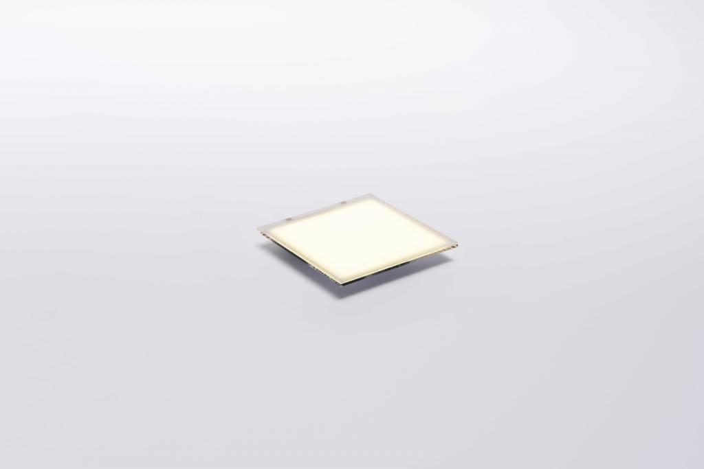 LG Display OLED Panel 50x50mm