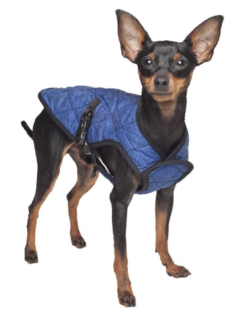 Aqua Coolkeeper Dog Cooling vest Pacific Blue